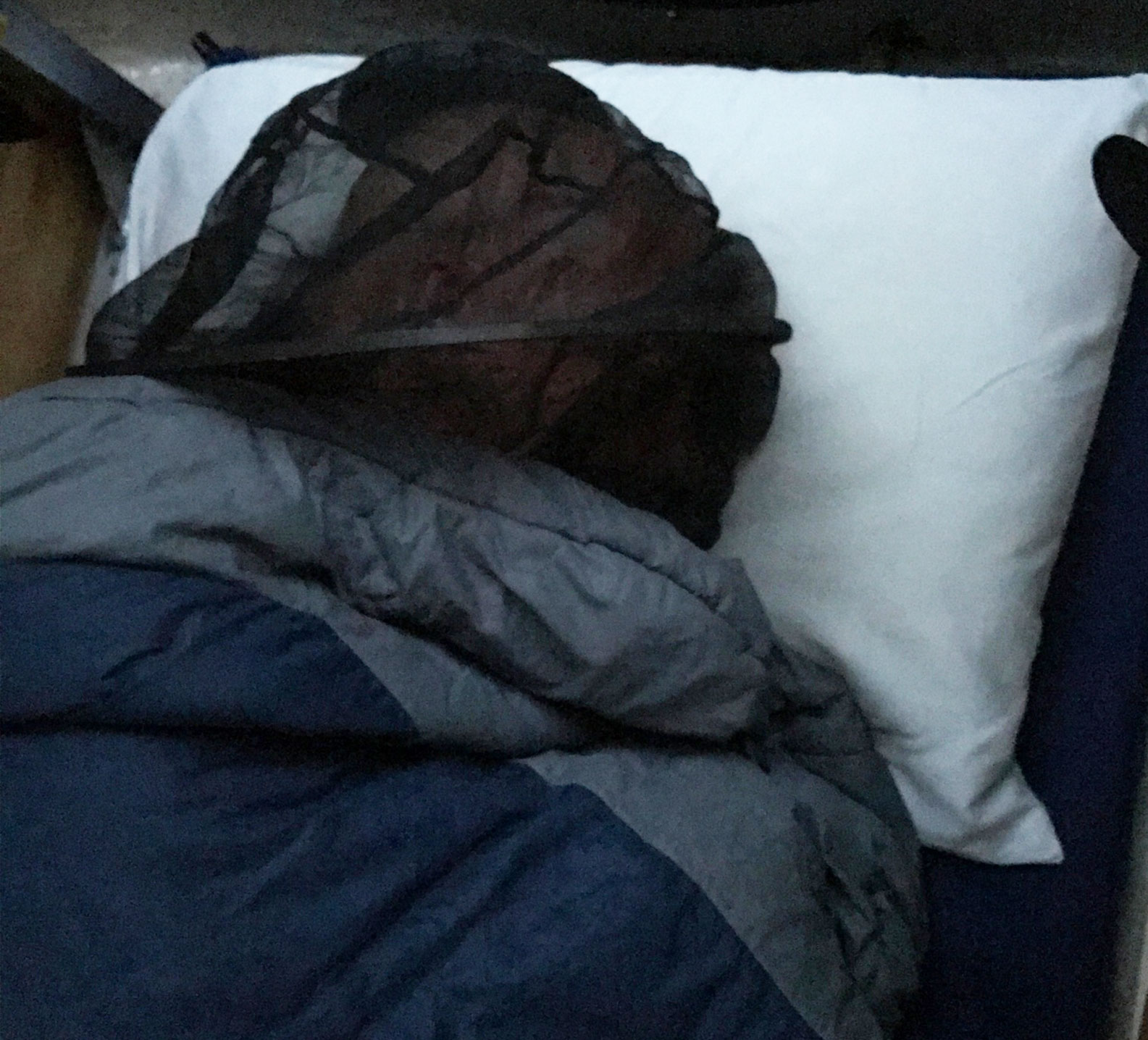 Marc Phelps sleeping with a net on his head due to mosquitos