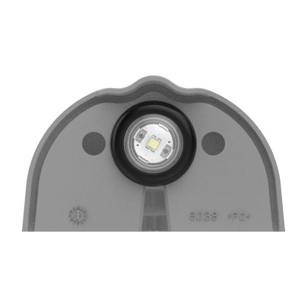 LED License Light - 360